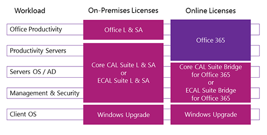 Matching CAL Suite Bridge with Office 365 Subscription