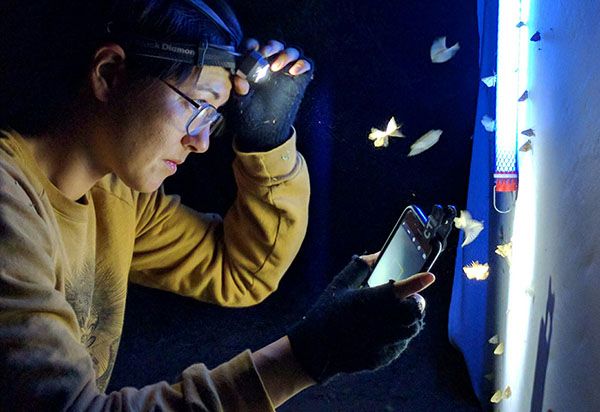 Scientist conducting nighttime research aided by a smartphone