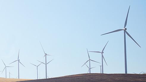 Groups of wind turbine