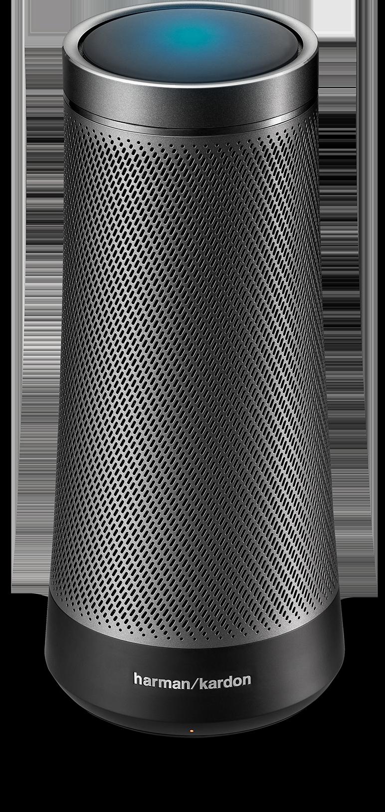 Graphite Invoke speaker
