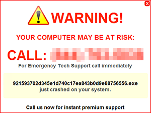 Tech support scam malware using fake system errors to trick users into calling a tech support hotline