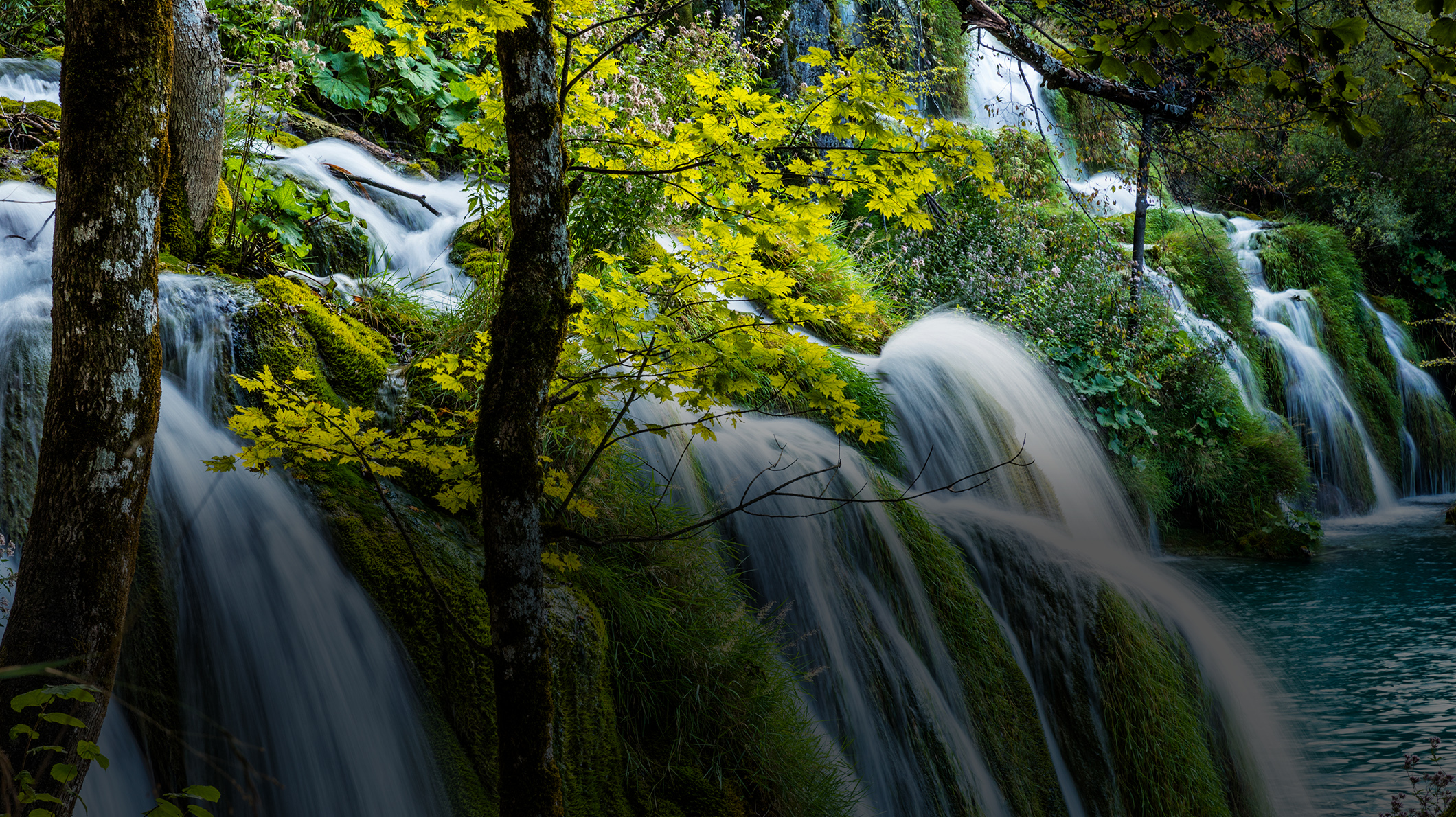 A waterfall in the woods