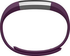 Fitbit Alta Classic Band (Plum) - Large