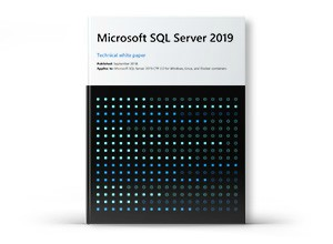 White Paper: Microsoft SQL Server 2019.