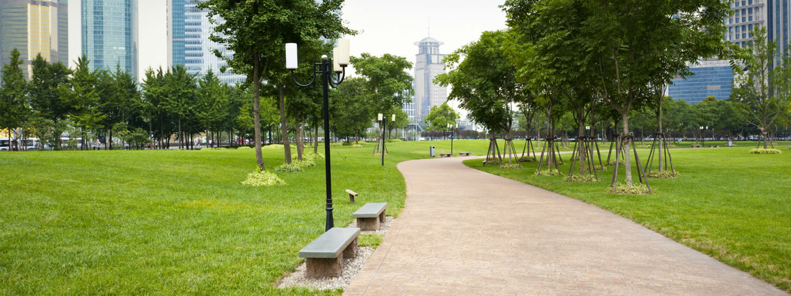 pathway with benches and green grass in a city park