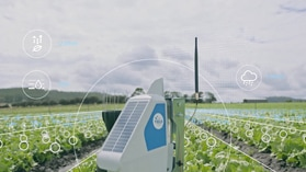 An agricultural data sensor sits in a field of crops.