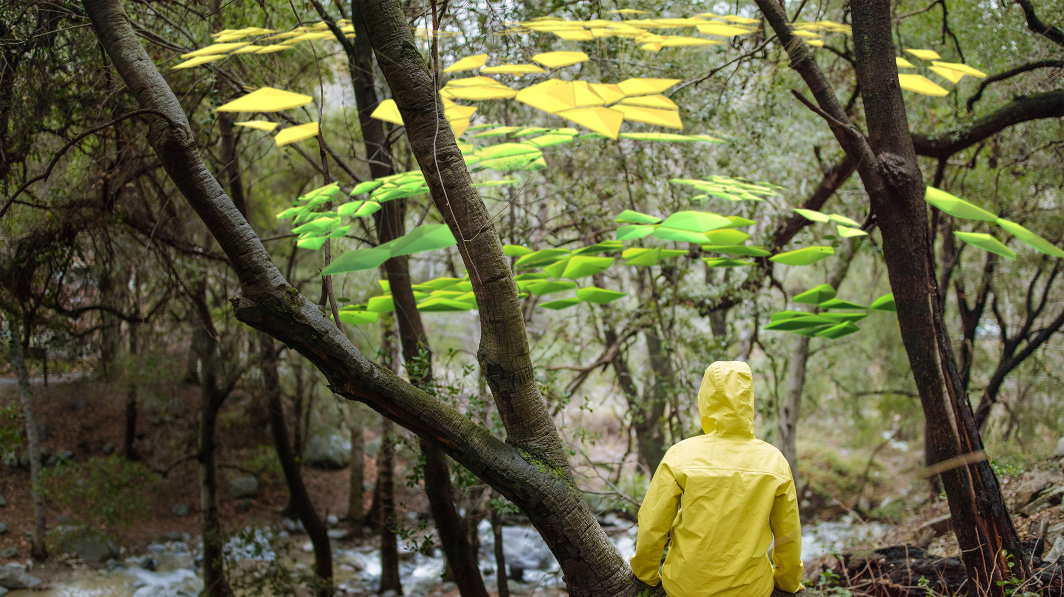 A person in a yellow raincoat sits below an AI visualization in a forest