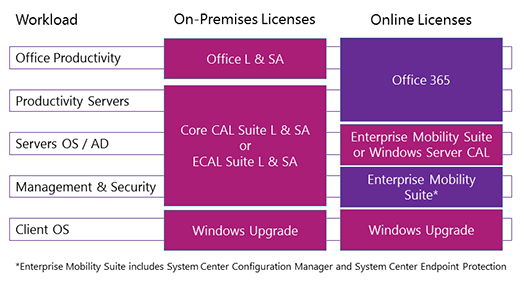 ms office enterprise license cost