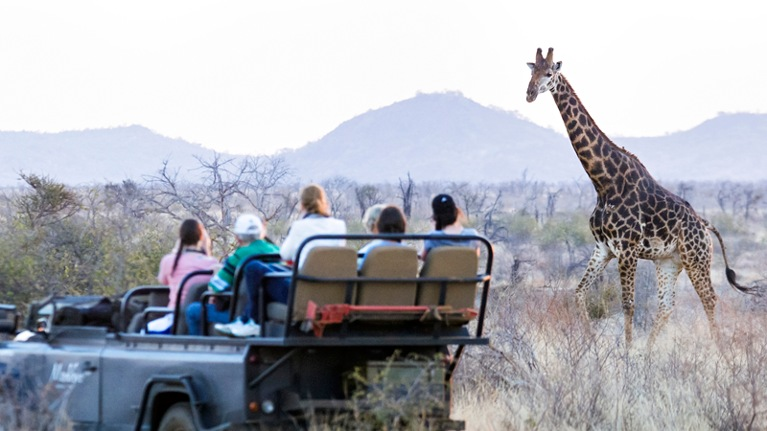 The Nature Conservancy Kenya Experience Sweepstakes | Microsoft Rewards