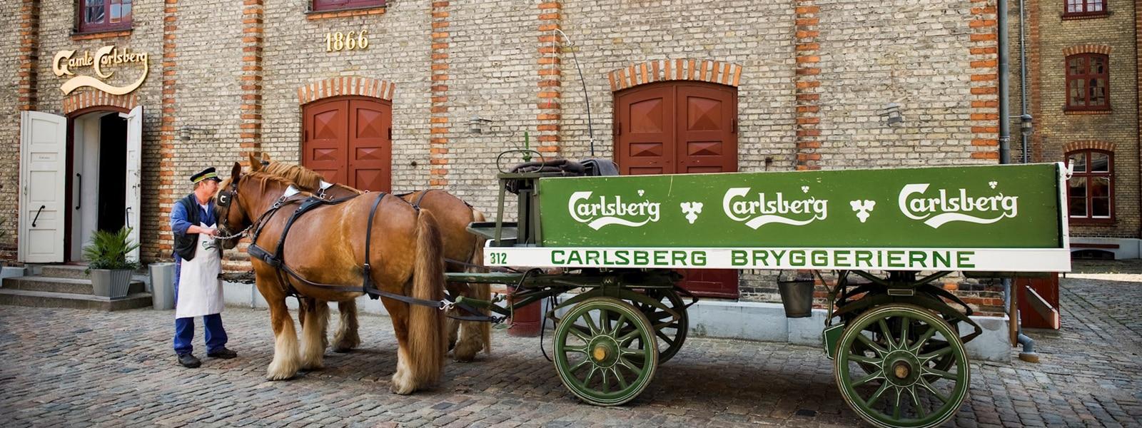 Carlsberg products