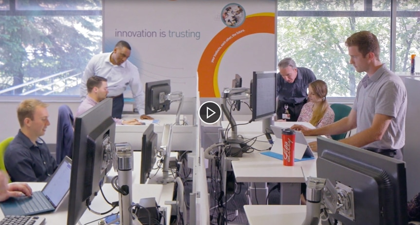 Still image from video showing several people working in an open office, on facing desks, using tablets and large desktop monitors.