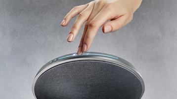 Epsilon Audio Dish speaker detail