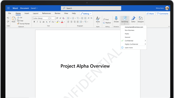 "A screenshot of a Word document that says ""Project Alpha Overview""."