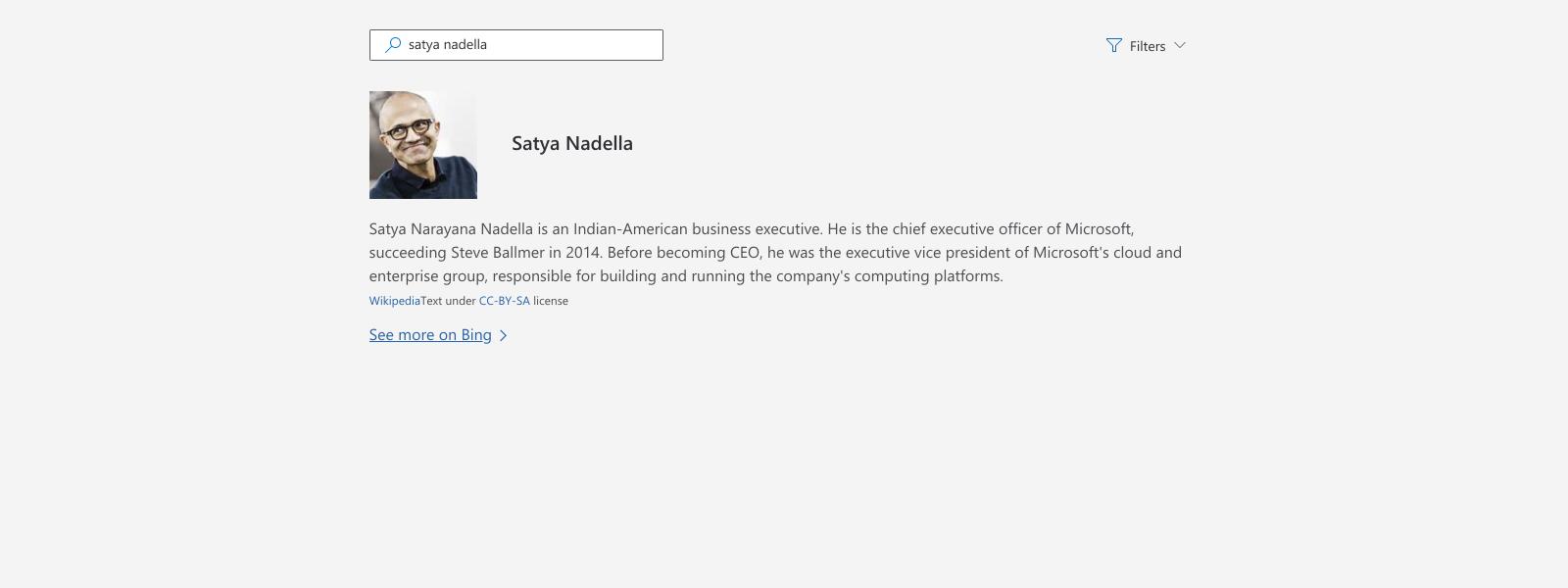 Illustration of looking up information about Satya Nadella.