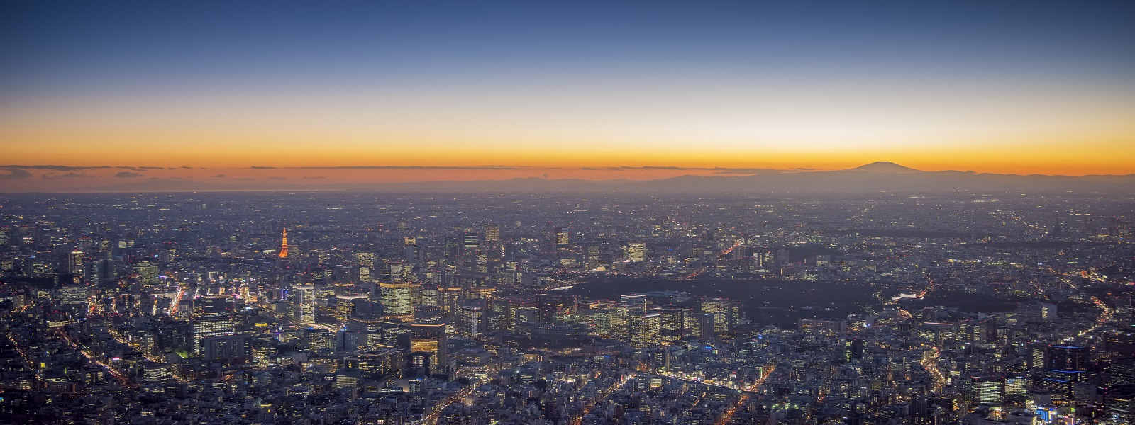 東京夕暮れの上空図