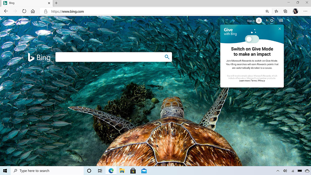 Microsoft Edge browser window showing Bing search engine with a photo of an underwater turtle