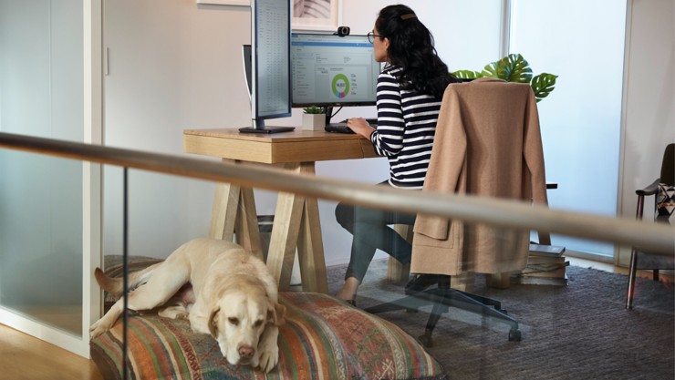 Person works at a desk in a home office using two large desktop monitors while a dog rests on a dog bed nearby.