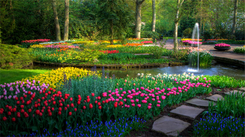 Outdoor garden with different color flowers, a water fountain, and brick walkway