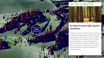 An interactive map highlighting parts of a large forest.