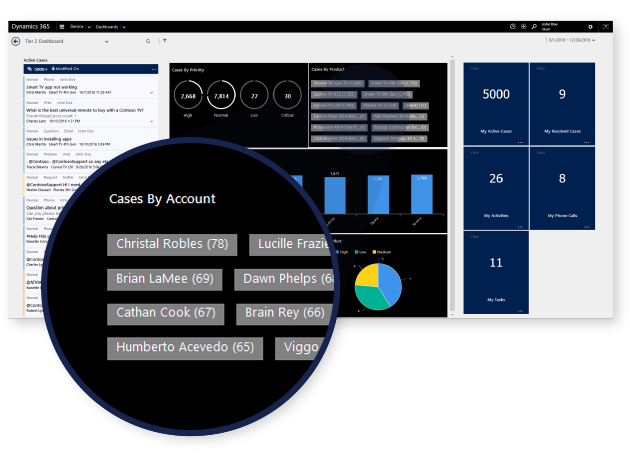 Example of Dynamics 365 customer information
