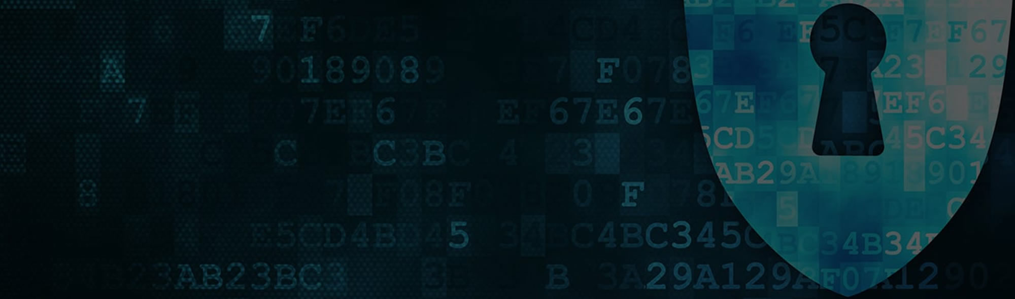 Binary code with security shield symbol.