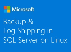 Thumbnail image for Backup and Log Shipping in SQL Server on Linux video