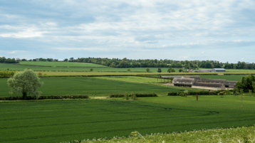 Lush green fields with farm buildings in the distance.