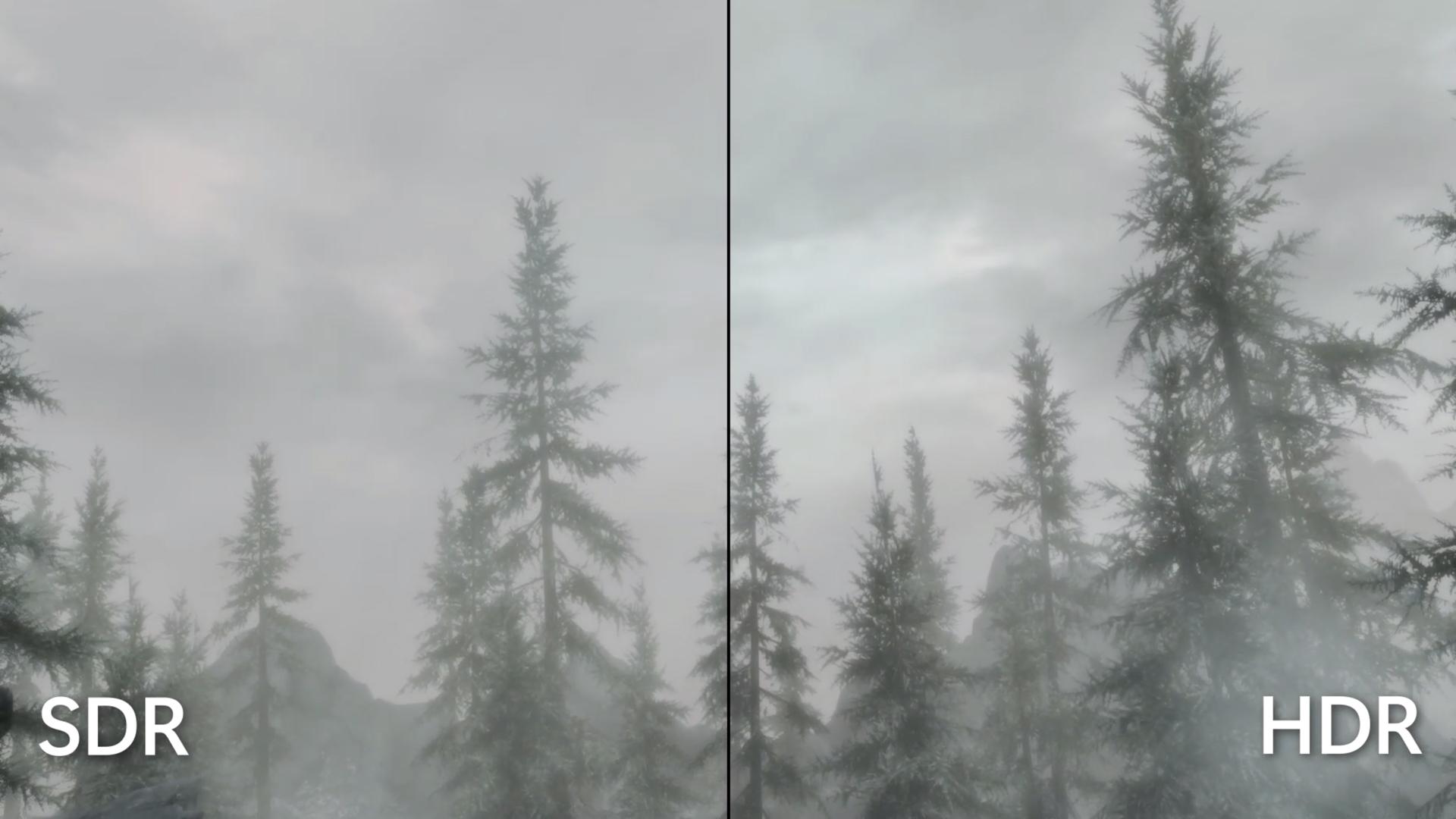 一方の側面がより鮮明な、木のコントラスト比較画像