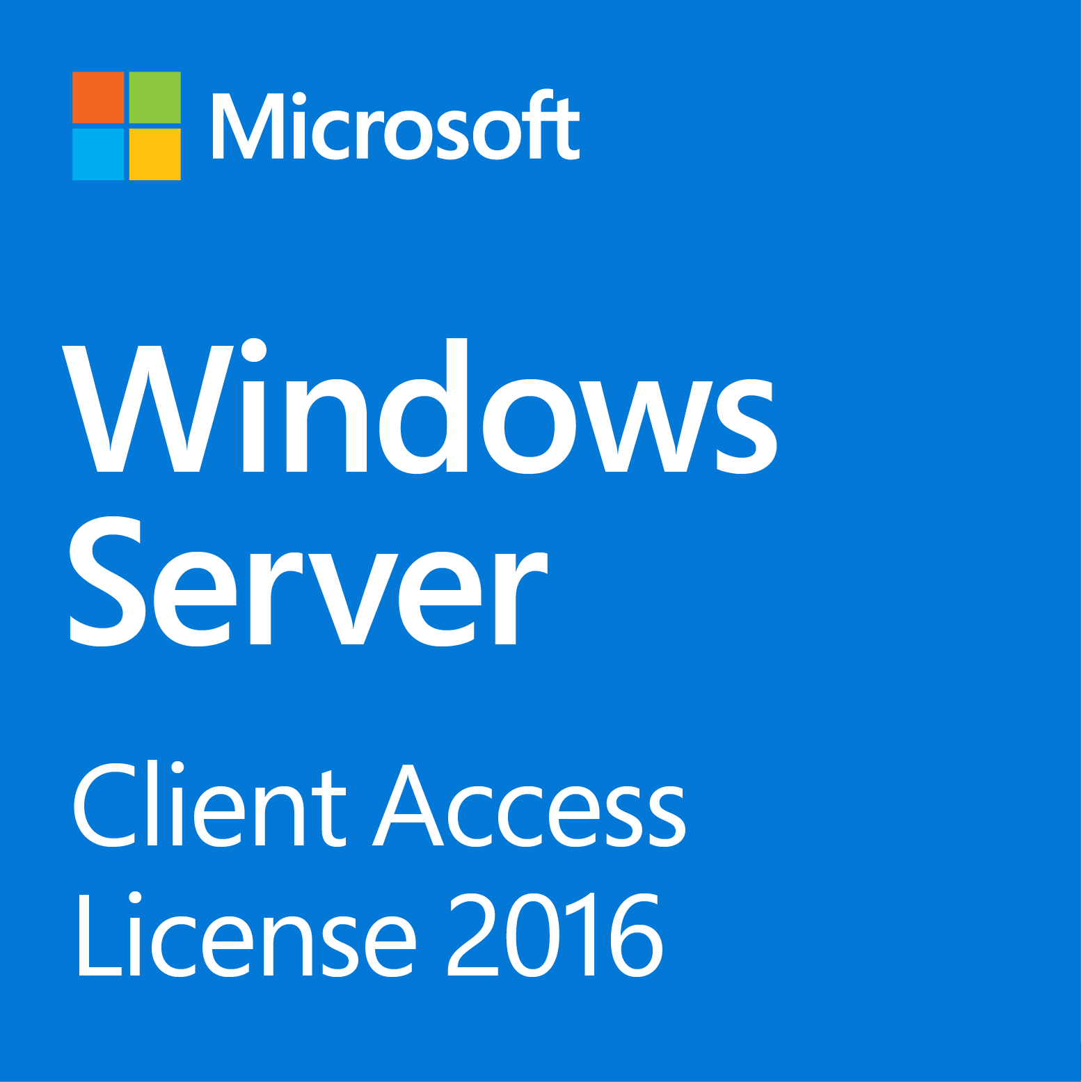 Windows Server 2016 Standard 10-Client Access License (English)
