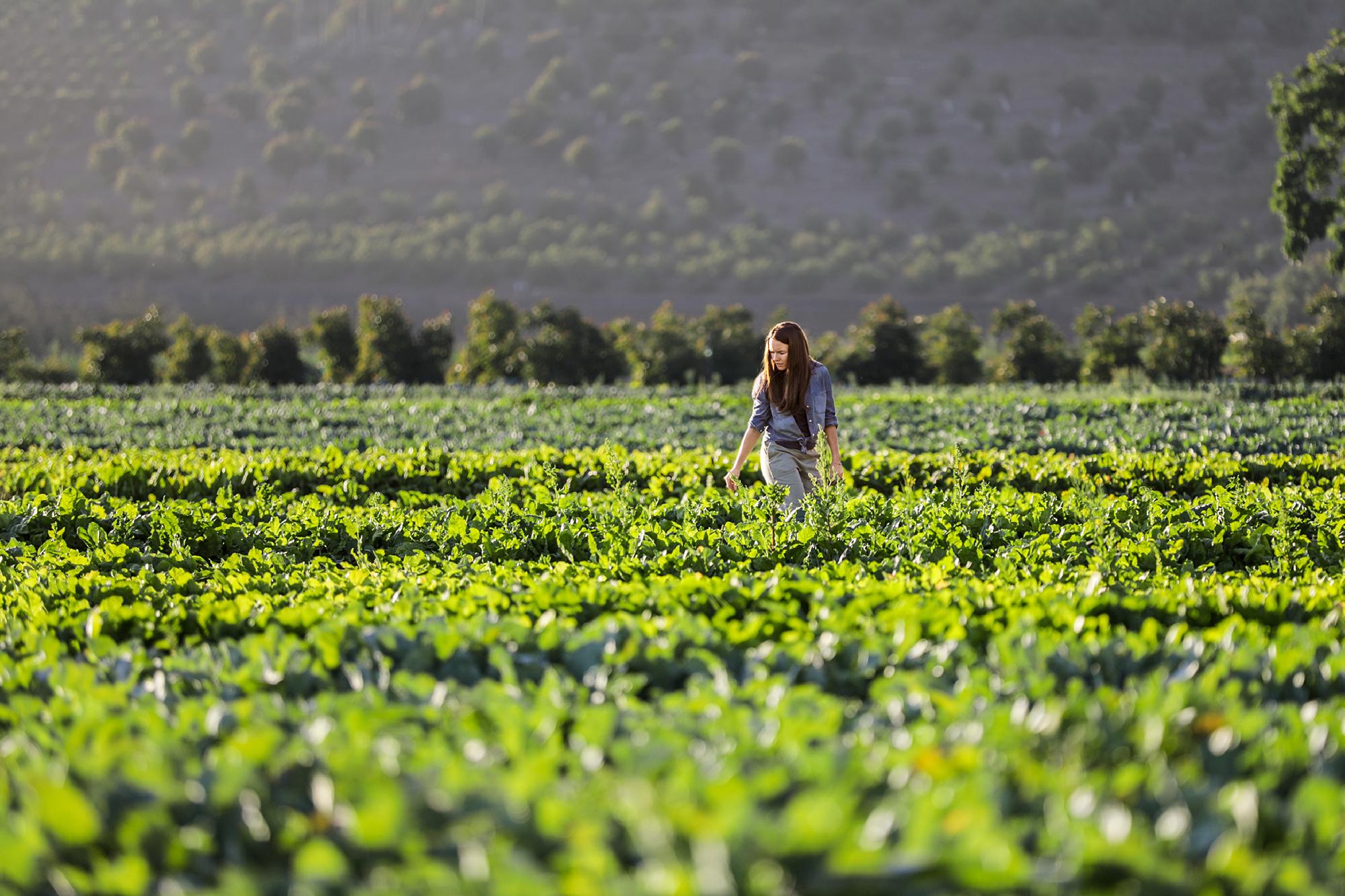 畑の中に立っている女性