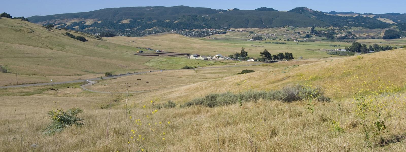 Sierra Foothills, Northern California